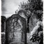 Petra: Kapitänsfriedhof auf Föhr